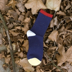 Plain and dot men socks